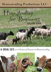 Homesteading for Beginners Volume Four