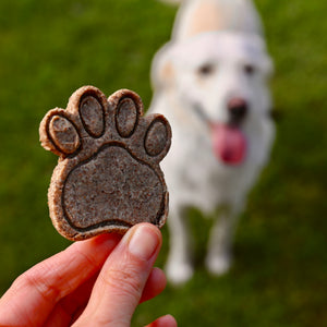 Buckwheat Dog Biscuits