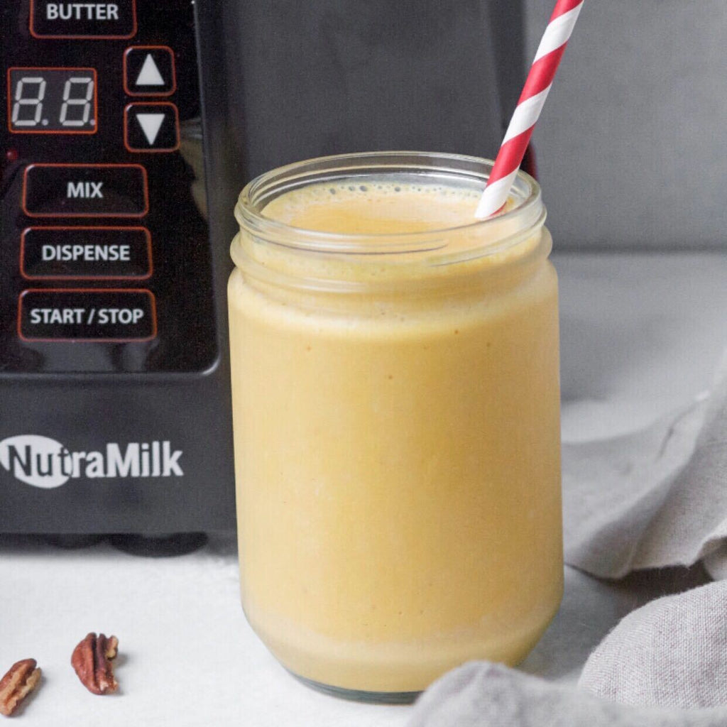 Paleo Vegan Pumpkin Pie Smoothie by Addison LaBonte