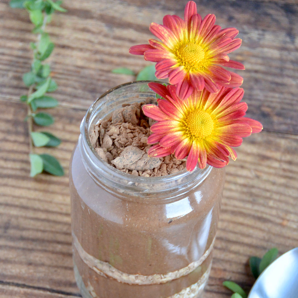 Earth Day Chia Pudding Dirt Cup