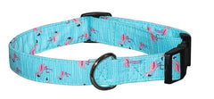 Flamingos Collars & Leads