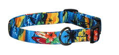 Hawaiian Vacation Collars & Leads
