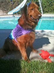 Enchanting Mermaid Dog Costume