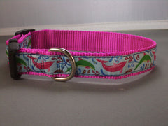Dolphins Collars & Leads