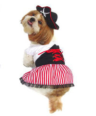 Lady Pirate Girl Dog Costume