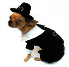 Pilgrim Dog Costume