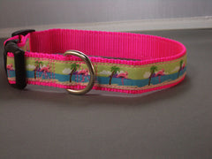 Pink Flamingo Collars & Leads