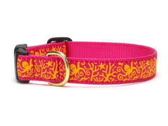 Under the Sea Collars & Leashes