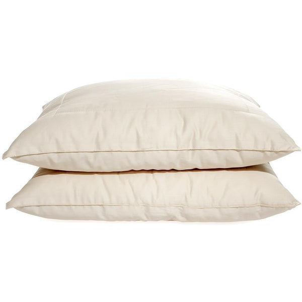 OMI Organic Spiraled-Wool™ Pillow