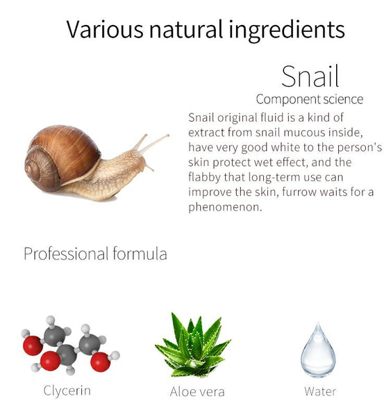 Natural Snail Regeneration Japan Facial Essence Mask MT512-E-6