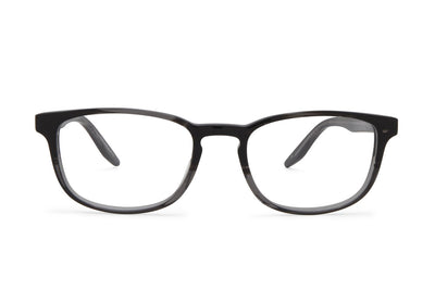 Barton Perreira Thompson Turtle Dove Gradient Eyeglasses 51-19-145