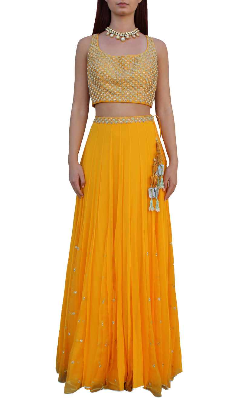 Sunshine Yellow Lehnga Choli