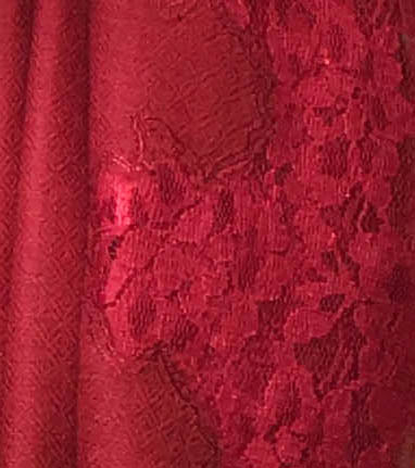 Ruby Lace Panel Pashmina Shawl