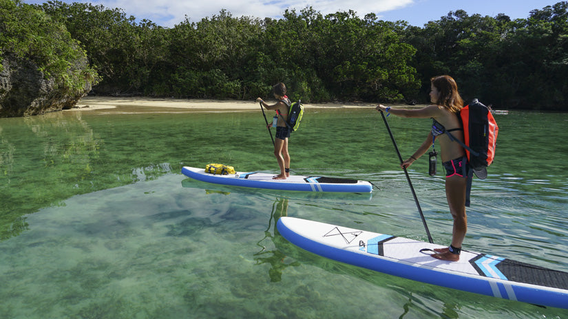 How to start a career as a paddle board instructor