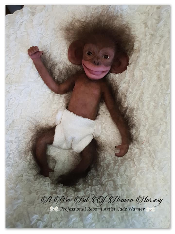 Silicone Full Body Baby Chimp Filbert-Completed- DEPOSIT ONLY
