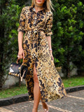 leopard print long sleeve V neck maxi dress