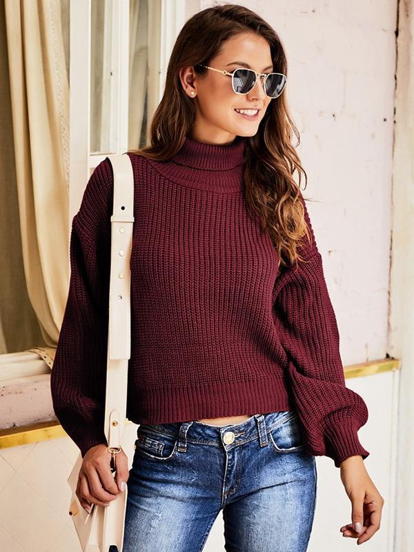 long sleeve solid turtleneck sweater