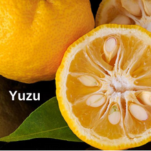 Load image into Gallery viewer, Yuzu