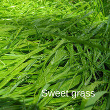 Load image into Gallery viewer, Sweet Grass