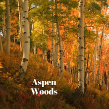 Load image into Gallery viewer, Aspen Woods