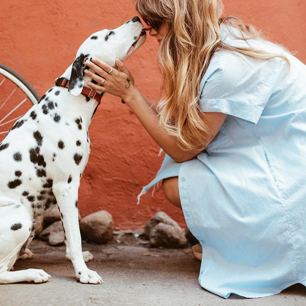 Unique Ways to Show Your Love for Your Pet