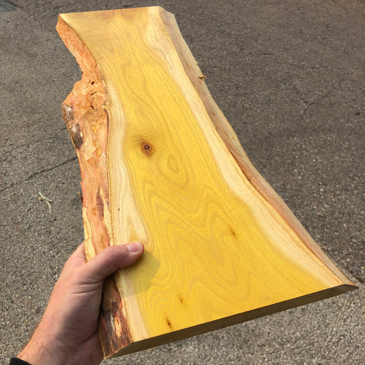 DIY Osage Orange Charcuterie Boards (LIMITED TIME)