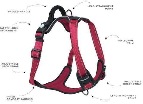 Huskimo ULTIMATE Harness  Adjustable for a perfect fit. Tough but not harsh.