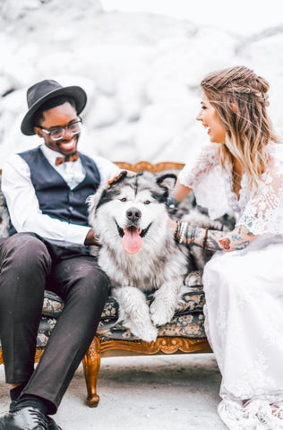 just married couple with dog