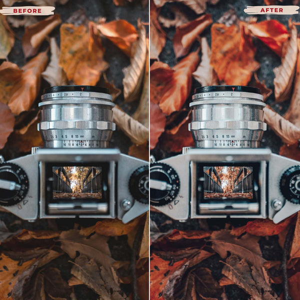 AUTUMN LEAVES MOBILE LIGHTROOM PRESETS