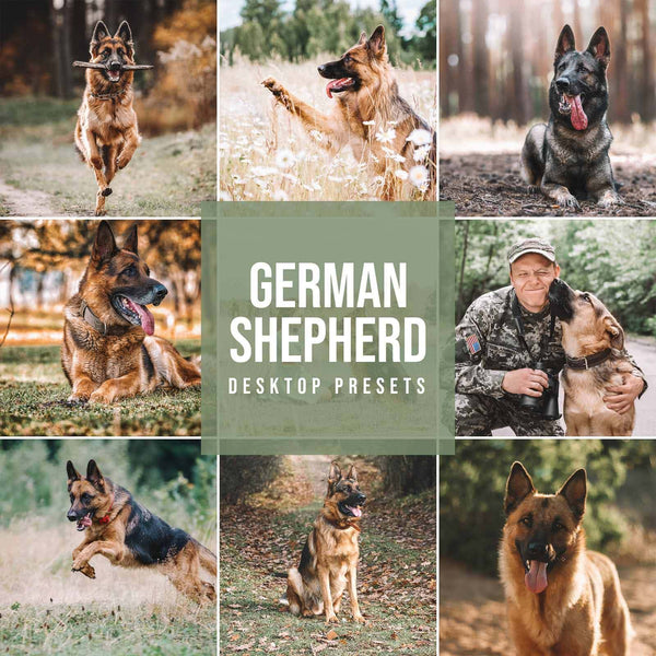 GERMAN SHEPHERD DESKTOP LIGHTROOM PRESETS