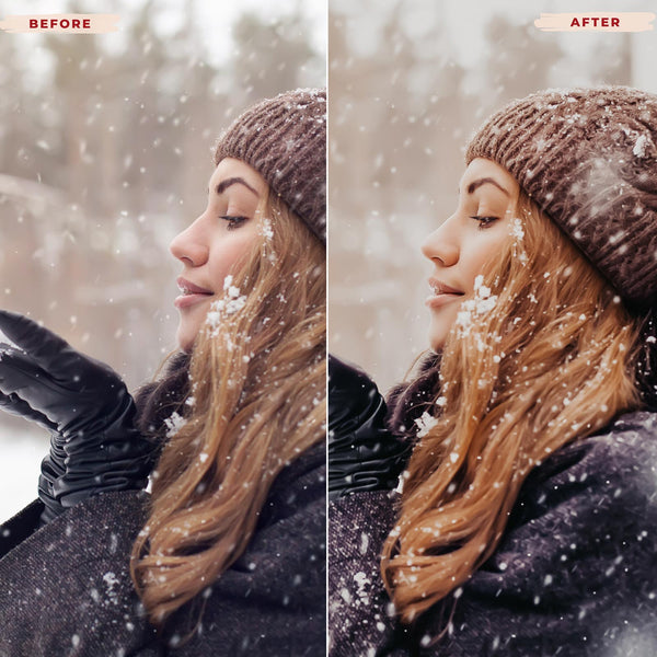 HELLWINTER MOBILE LIGHTROOM PRESETS