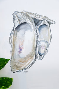 Oyster Cluster 2