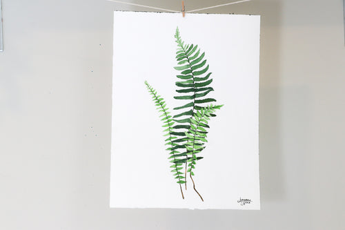 Ebony Spleenwort - Watercolor Painting