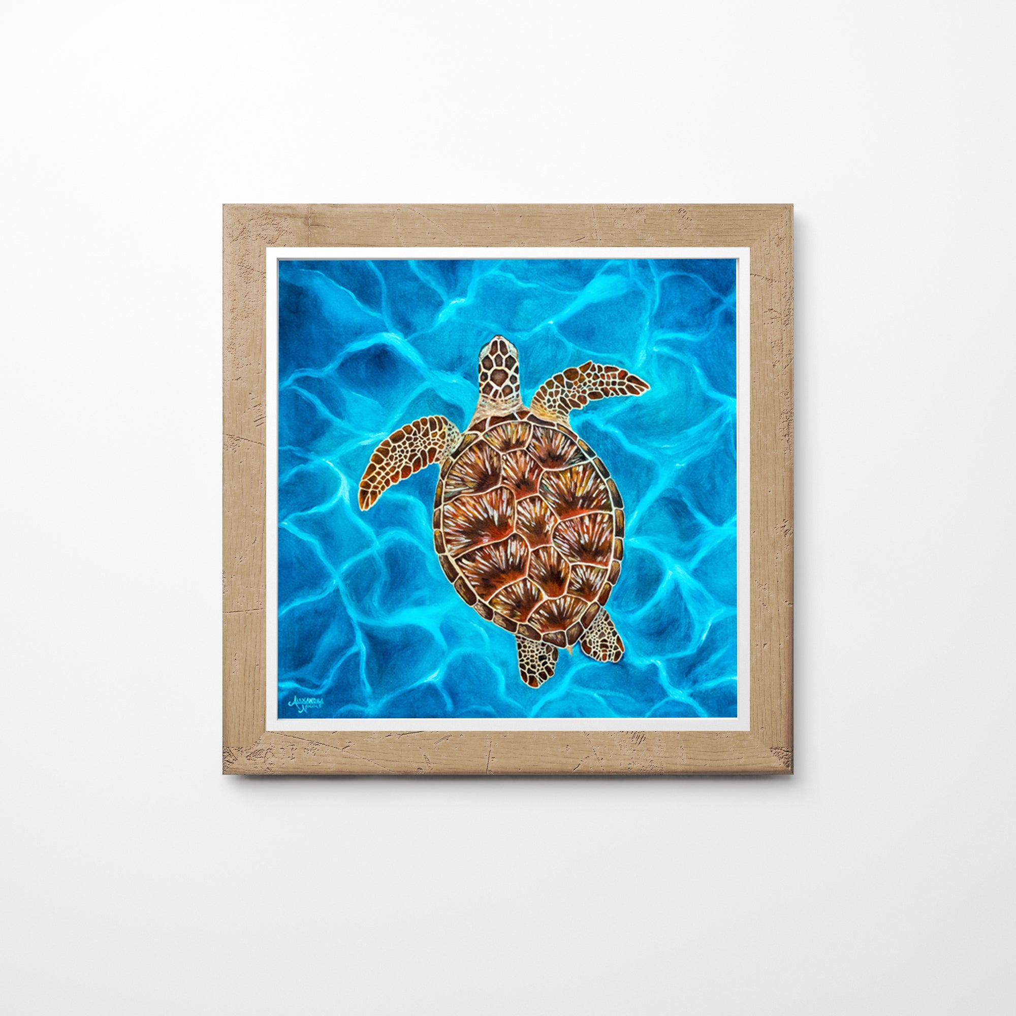Framed Luna the Sea Turtle Art Print With Blue Water and Brown Turtle