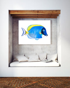 Powder Blue Tang Fish Print