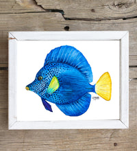 Load image into Gallery viewer, Purple Tang Fish Art Print by Alexandra Nicole
