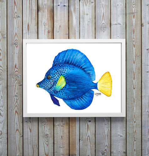 Framed Purple Tang Fish Art Print
