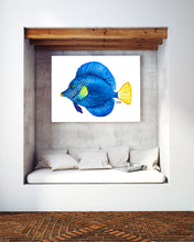 Load image into Gallery viewer, Tropical Purple Tang Fish Art Print by Alexandra Nicole