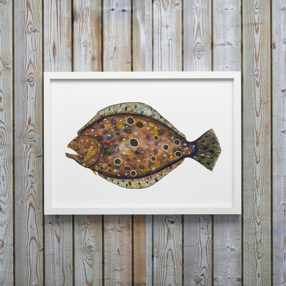 Flounder Watercolor Fish Print by Coastal Artist Alexandra Nicole $27