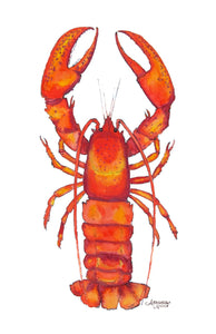 Lobster Watercolor Art Print by Alexandra Nicole