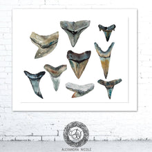 Load image into Gallery viewer, Shark Teeth Collection Watercolor Art Print by Alexandra Nicole