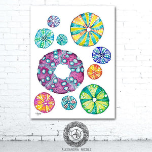 Coastal Wall Art Sea Urchin Print