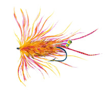 Load image into Gallery viewer, Watercolor Orange Shrimp Fly Fishing Flies Print by Alexandra Nicole