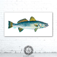 Load image into Gallery viewer, Trout Art, Fish Wall Decor