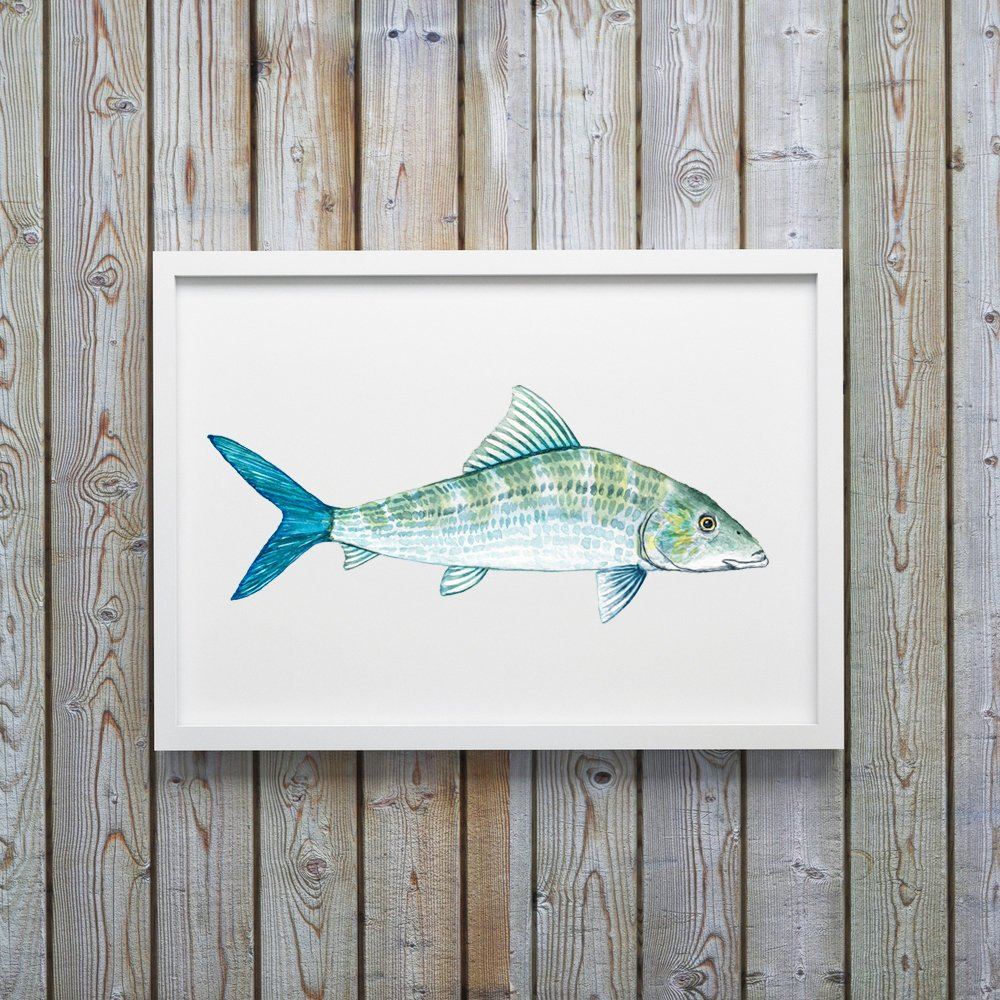 Bone Fish Art Print