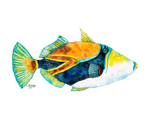 Hawaii Art Trigger Fish Tropical Fish Print