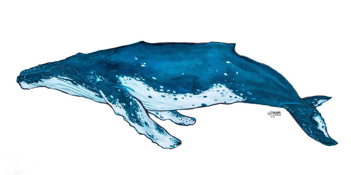 Whale Art Print in Blue Tones