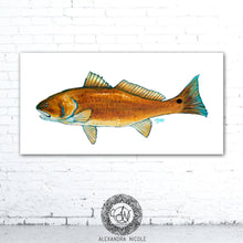 Load image into Gallery viewer, Red Fish Fish Print