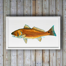 Load image into Gallery viewer, Red Drum Fish Print