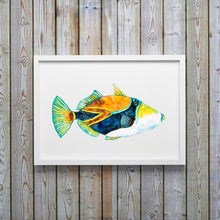 Load image into Gallery viewer, Trigger Fish Art Print or Hawaiian Reef Trigger Fish